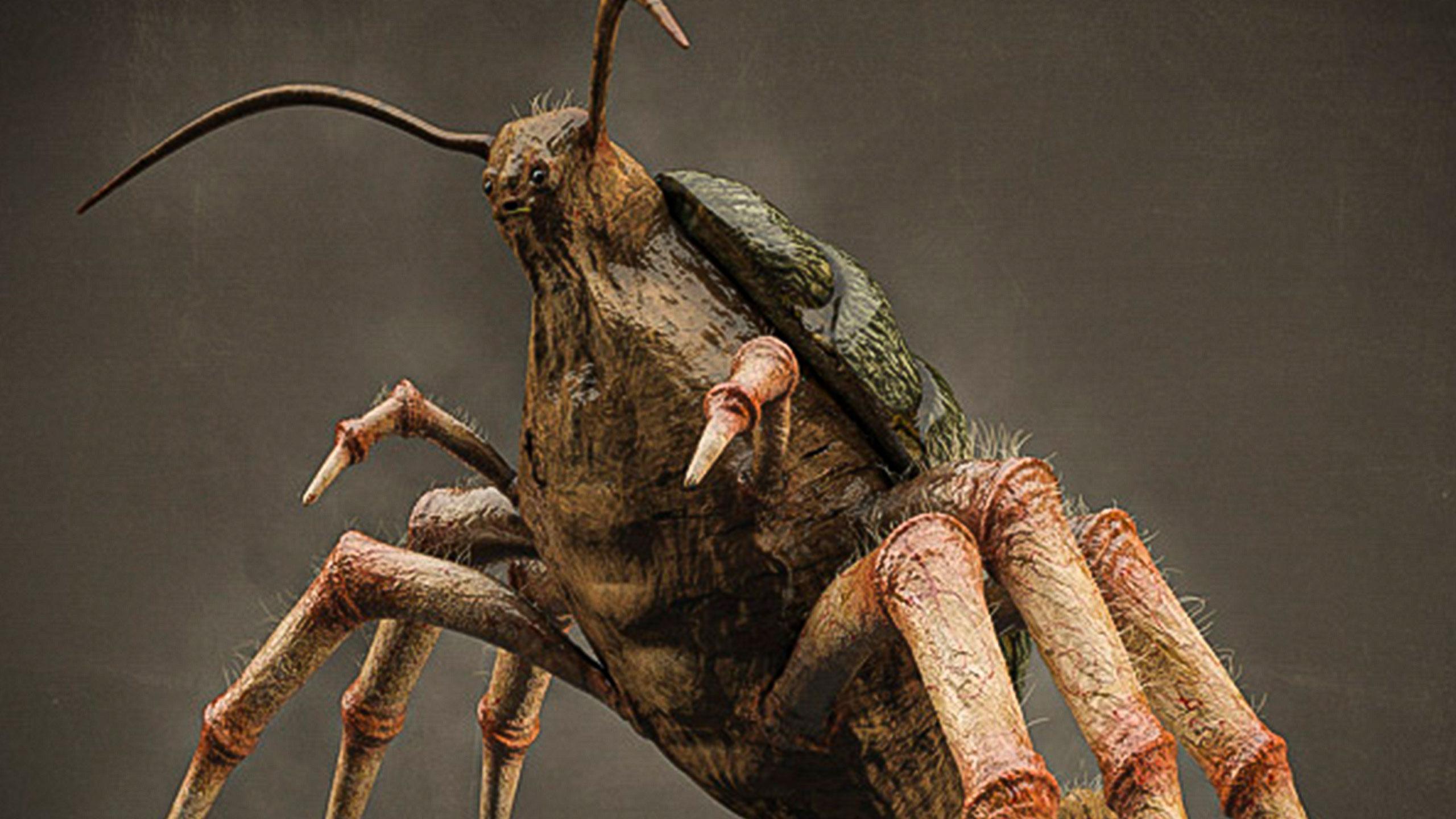 Mad Bug